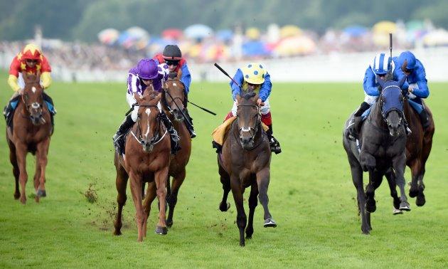Shergar cup top jockey betting lines 2 1 betting odds explained uk