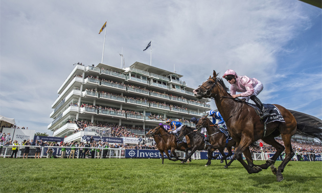 Investec Derby Entries: 17 colts entered for Epsom Classic
