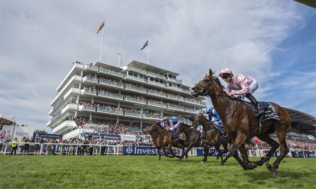 Investec Derby: Runner-By-Runner Guide
