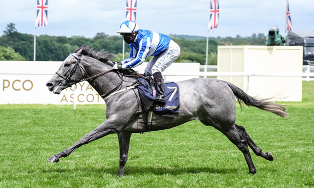 Easterby outlines weekend options for Art Power