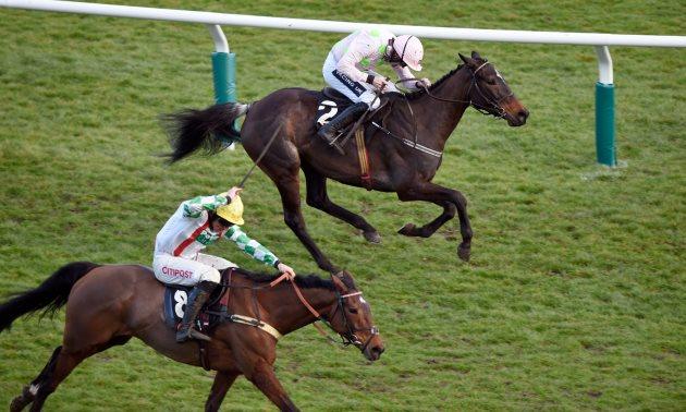 Olbg mares hurdle betting lines editec betting sites
