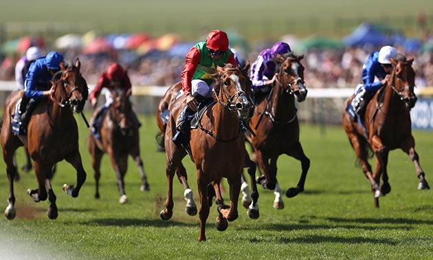 1000 guineas betting 2021 tips and tricks 28 million bitcoins