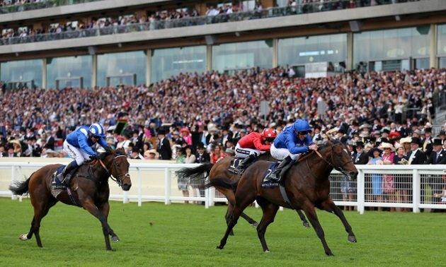 Shergar cup top jockey betting sites inside slant sports betting forum