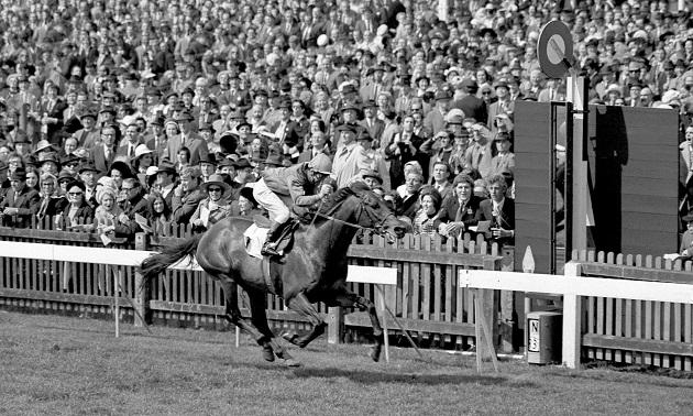 Greatest Racehorses: Brigadier Gerard