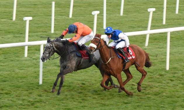 Topham trophy bettingadvice virtual racing betting tips
