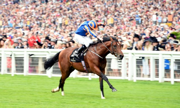 2000 guineas betting converting odds sports betting