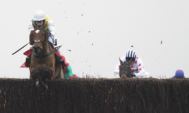 2021 Grand National | Runners who could write their own ...