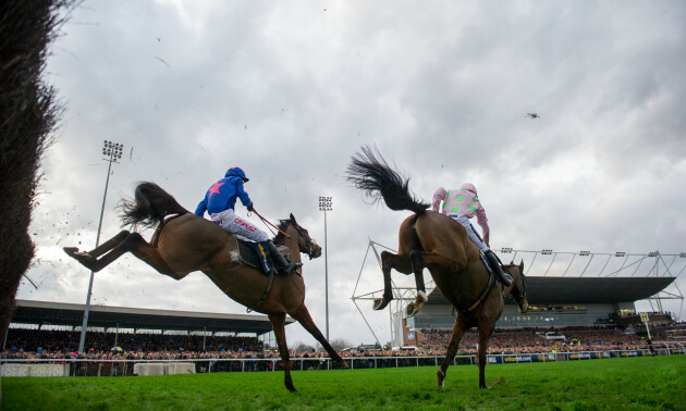 King george vi stakes betting tips samvo betting cafe astrology