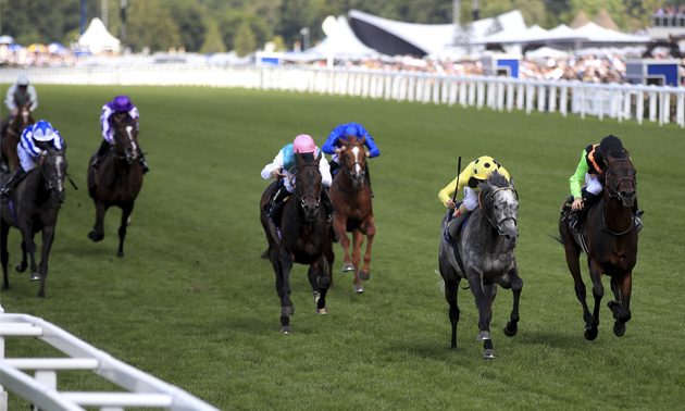 Hardwicke stakes betting tips does vegas take bets on the election