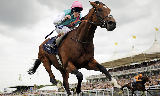Simon Rowlands: What does it take to win the Sussex Stakes?