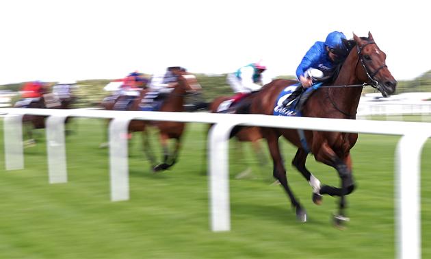irish champion stakes 2021 betting online