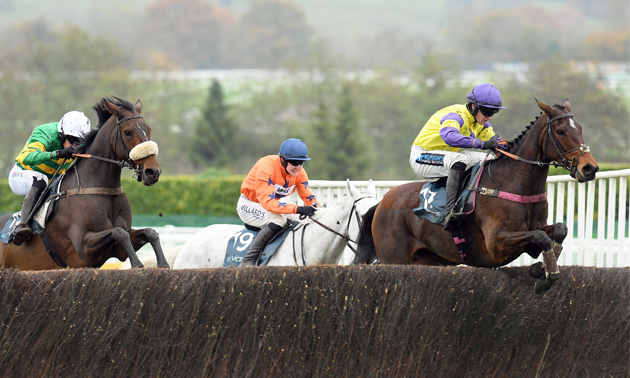 paddy power horse racing betting for dummies