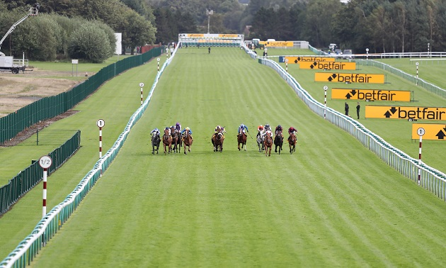 16:05 Haydock: Timeform preview and free Race Pass