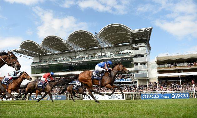 Coronation stakes betting line nz sports betting