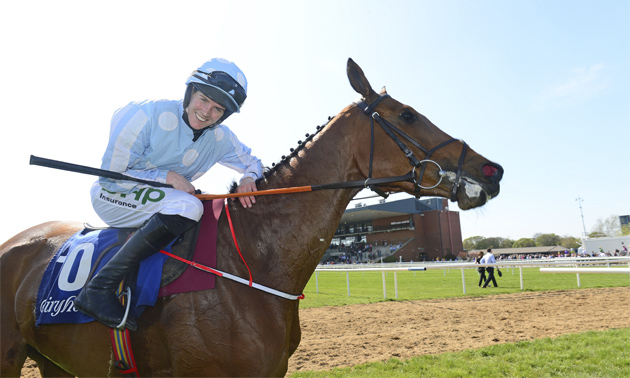 Paddy power horse racing betting picks