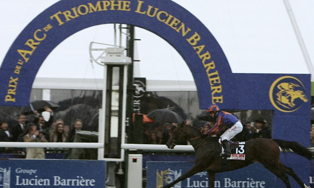 Star Sires: Montjeu's best horses