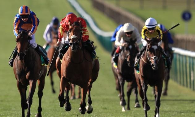 Irish 1000 guineas betting thomas bettinger kaiserslautern military