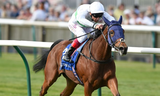 Pretty polly stakes betting tips bet on ncaa football rankings