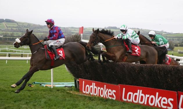 Ladbrokes irish grand national betting the sports betting