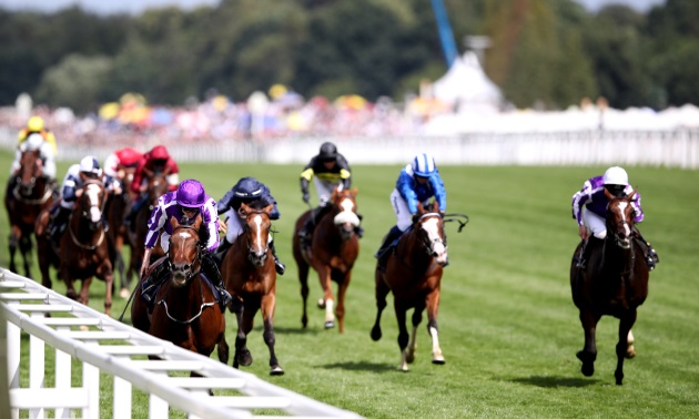 King george stakes betting on sports bitcoins values