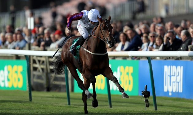 Lockinge stakes betting line pfa young player of year betting trends