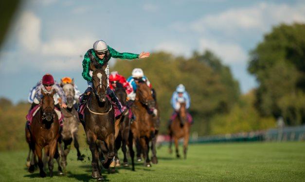 duke of york stakes betting