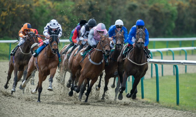 Horse racing betting odds wolverhampton west of ireland golf betting rules