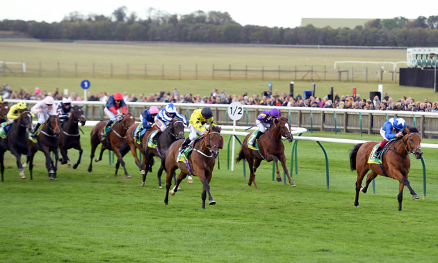 cambridgeshire handicap betting rules
