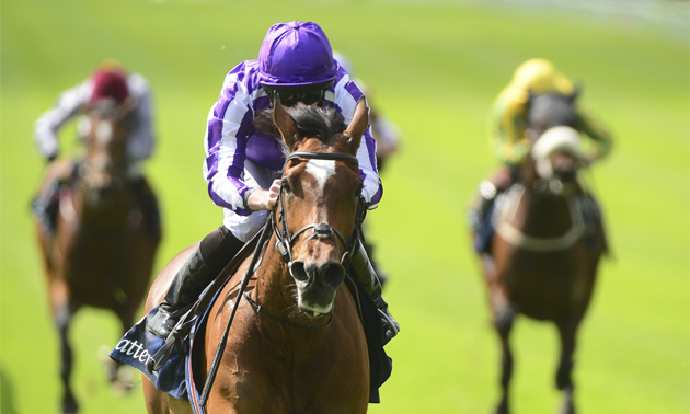 Classy Magical storms to Pretty Polly victory