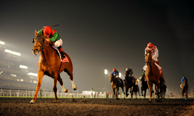 Dubai world cup betting guide football division 2 betting odds
