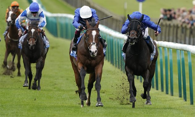 2000 guineas betting 2021 military online betting companies uk national lottery