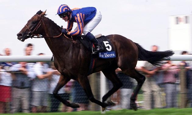 Star Sires: Sadler's Wells's best horses