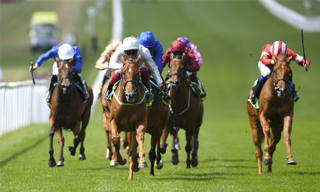 Timeform 1000 guineas betting cryptocurrency conference 2021