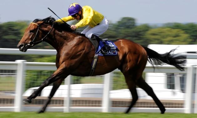 Star sires: Cape Cross's best horses