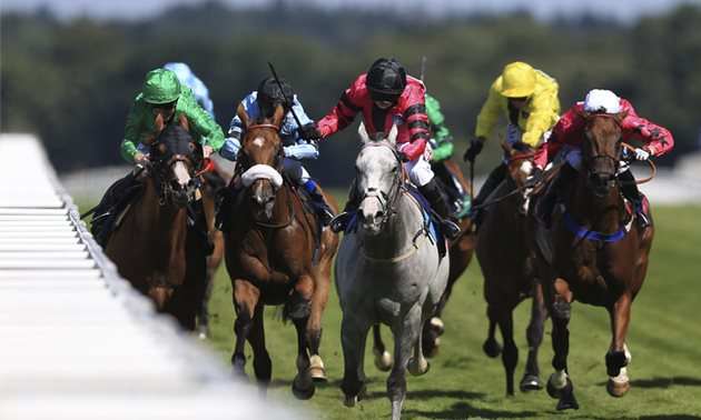 Shergar cup betting sites fulltime betting income