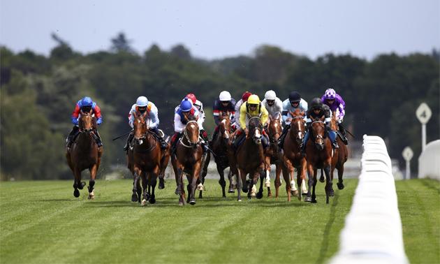 live horse racing radio uk betting exchanges