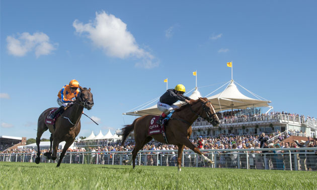 Timefigure preview: Day 1 of Glorious Goodwood