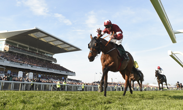Horse racing betting odds wolverhampton grand roulette betting online
