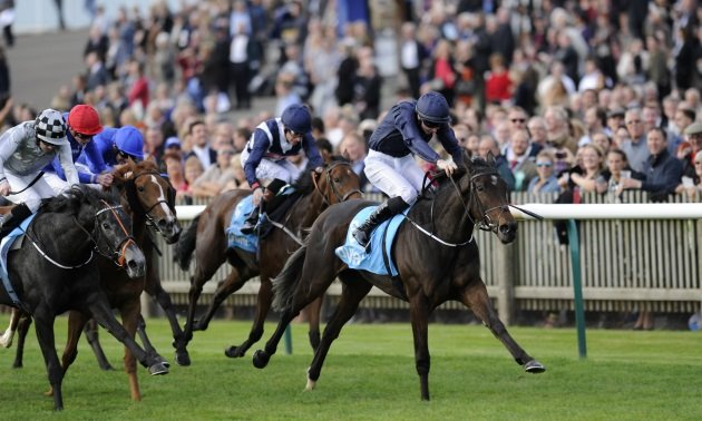 Ante post betting 1000 guineas to dollars best sports betting twitter accounts