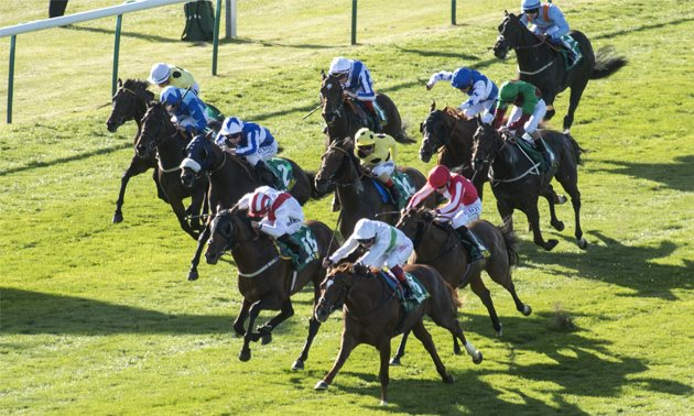 Cambridgeshire handicap betting rules grimthorpe chase betting system
